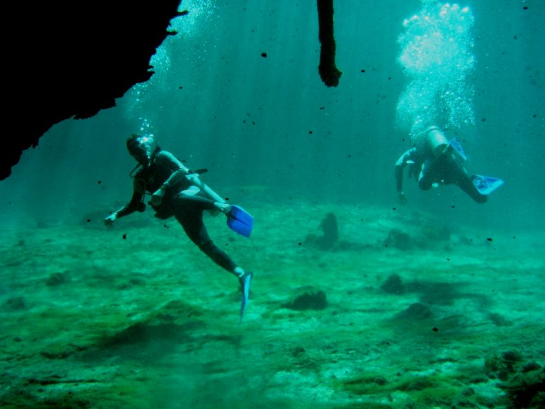 Cenotes diving with Easy Chango Bratjami