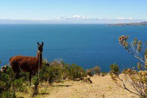 Isla de la Luna & Isla del Sol (Yumani to Challapampa walk) – Titicaca Lake (2.)