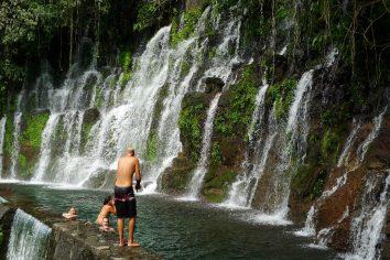 El Salvador: druhy poltyzden