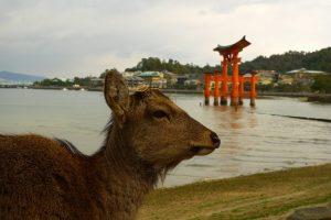 UNESCO Miyajima (Hiroshima)
