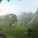 Tikal in the morning