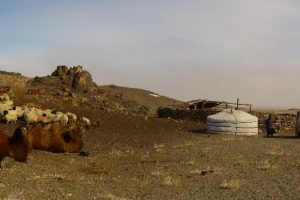 From the East to the West – Panoramas/Mongolia